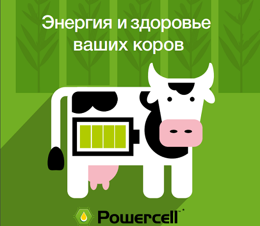 Гибриды Powercell™
