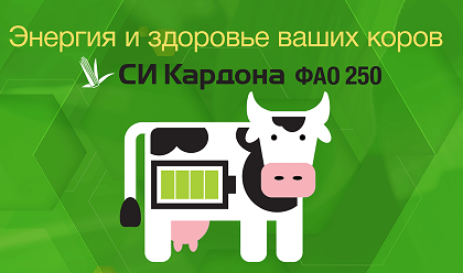 Гибриды кукурузы Powercell™